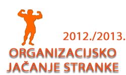 Organizacijsko jačanje stranke u ak. god. 2012./2013.